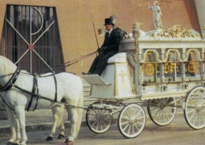 Carrozza cavalli bianchi
